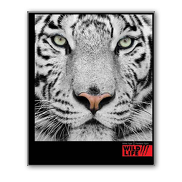Фотоальбом EVG 20sheet S26x32 Wild Life w/box